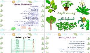 تخطيط-فهم-وحدة-النبات