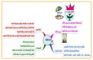 خرائط ومفاهيم خامس ابتدائي اسرية