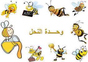 وحدة النحل رياض الاطفال 1440