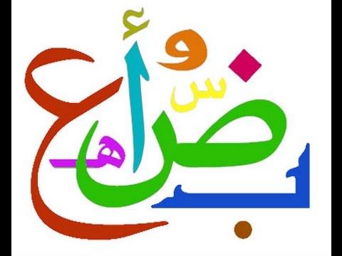 كتاب الاضواء لمادة اللغة العربية للصف الرابع الابتدائي