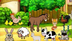 قوانين الاركان وحدة الحيوان رياض اطفال