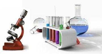 أدخال تحضير ببواية المستقبل مادة العلوم للصف السادس الابتدائي فصل دراسي أول 1441