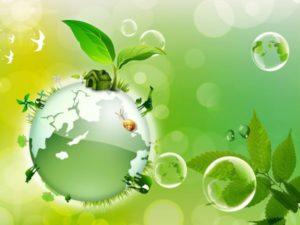 دليل المعلم لمادة علم البيئة مقررات 1441 هـ \ 2020 م