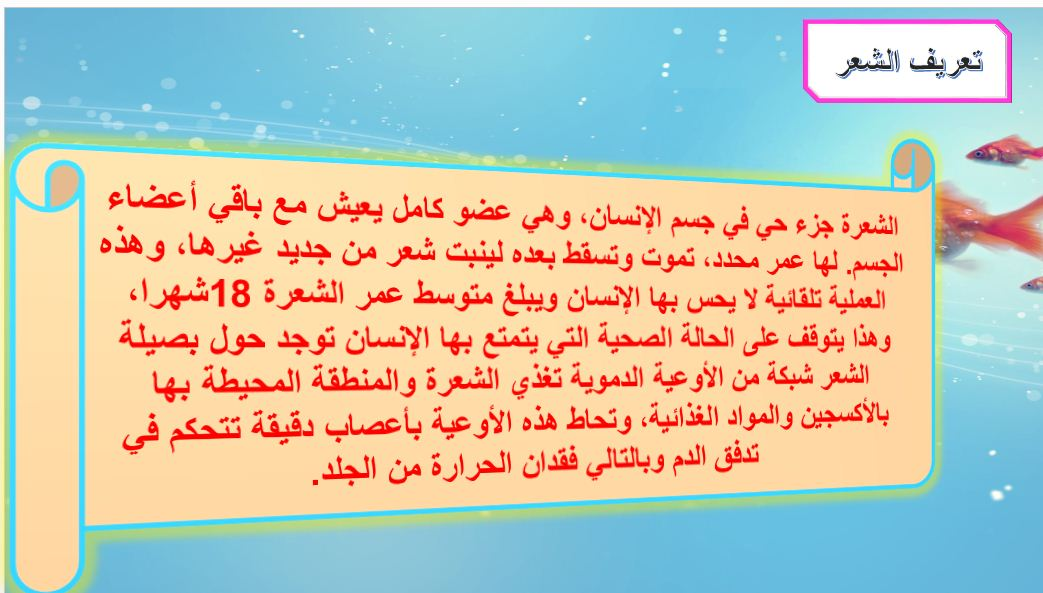 اسرية 3ث