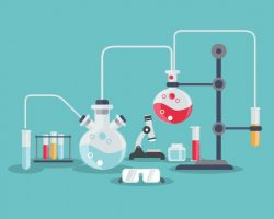 حل اسئلة درس المخلوقات الحية والبيئة والطاقة مادة العلوم الصف الأول متوسط الفصل الدراسي الثاني 1441