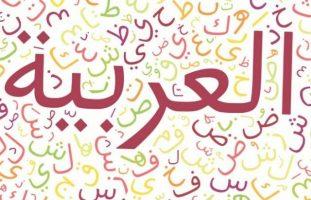 حل اسئلة درس التورية مادة الكفايات اللغوية 6 مقررات 1441 هـ