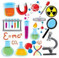 تحضير درس المخلوقات الحية والبيئة والطاقة مادة العلوم الصف الأول متوسط الفصل الدراسي الثاني 1441