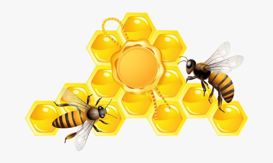 الدليل الاجرائي الركن الفني وحدة النحل رياض اطفال