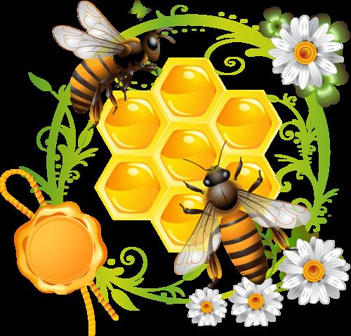 الدليل الاجرائي ركن الرسم وحدة النحل رياض اطفال
