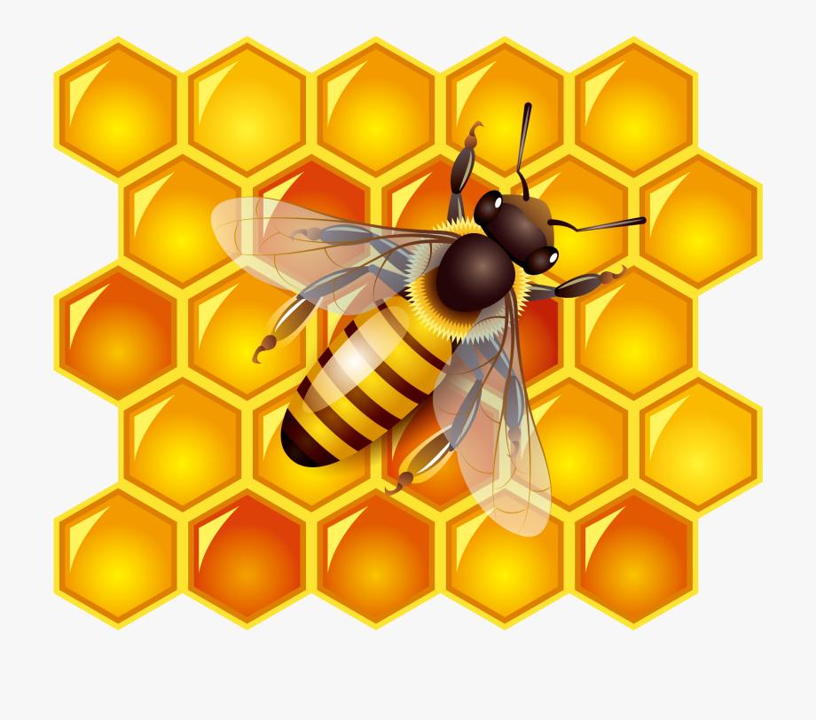 الدليل الاجرائي ركن الفن وحدة النحل رياض اطفال