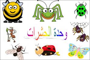 ركن القراءة والكتابة وحدة الحشرات رياض اطفال