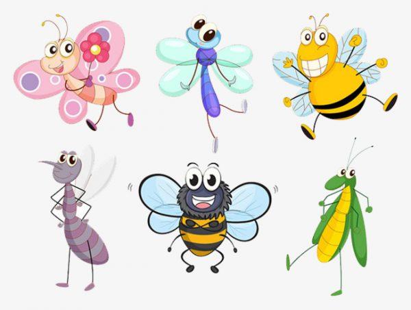 قصص وحدة الحشرات رياض اطفال
