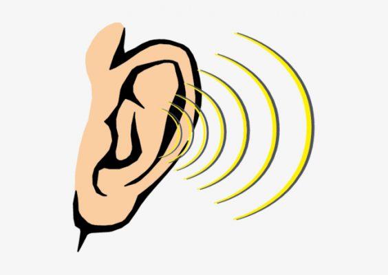 الدليل الاجرائي ركن العلوم وحدة الصوت رياض اطفال