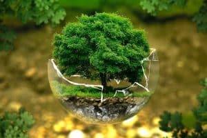 تحضير الوزارة مادة علم البيئة نظام مقررات الفصل الدراسي الثاني