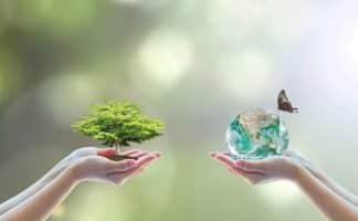 ملخص مادة علم البيئة نظام مقررات الفصل الدراسي الثاني
