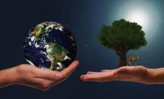 حل اسئلة مادة علم البيئة نظام مقررات الفصل الدراسي الثاني