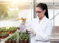 بور بوينت مادة علم البيئة نظام مقررات الفصل الدراسي الثاني