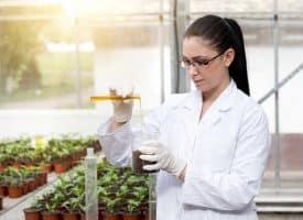اوراق عمل مادة علم البيئة نظام مقررات الفصل الدراسي الثاني
